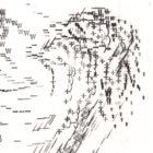 Horniman_Dodo_detail2