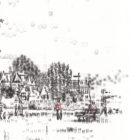Wimbledon_Common_Bank_Holiday_monday_detail3