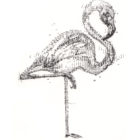 Keira_Rathbone_Kate_Atkinson_Flamingo2_complete_web