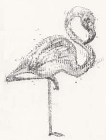 Keira_Rathbone_Kate_Atkinson_transcription_Flamingo_2_web