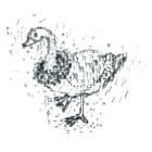 Keira_Rathbone_Typewriter_Art_Goose_800px