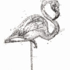 Keira_Rathbone_Kate_Atkinson_Flamingo2_CARD