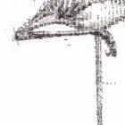 Keira_Rathbone_Kate_Atkinson_Flamingo2_CARD_detail3
