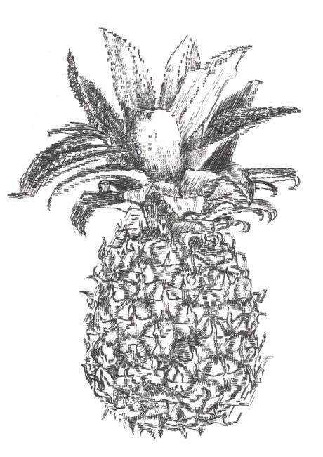 Keira_Rathbone_Typewriter_Art_Pineapple_CARD_web