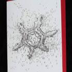 Keira_Rathbone_Xmas2019_card_Microscopic_Snowflake_env_web