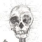 SkeletonNEW_detail1_web