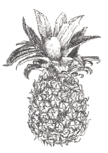 Keira_Rathbone_Typewriter_Art_Pineapple_CARD_web