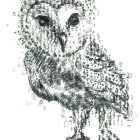 Keira_Rathbone_Typewriter_Art_Type_of_Owl_CARD