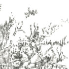 Keira_Rathbone_Typewriter_Art_Durlston_ShouldntHaveLentMySnorkelandMaskButIdid_detail7