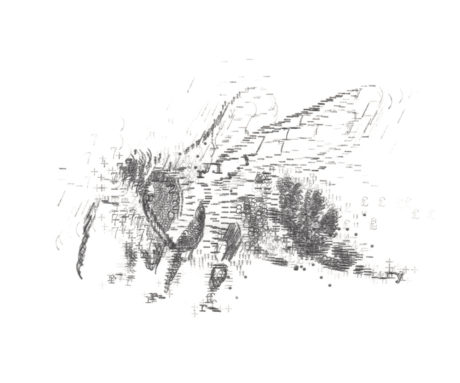 Keira_Rathbone_Original_size_Typewriter_Art_Bee_300_PRINT_web