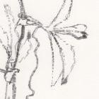Keira_Rathbone_Passion_Flower_Original_Typic_detail3