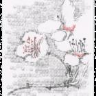 Keira_Rathbone_Typewriter_Art_Original_Cherry_Blossom_2_web