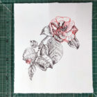Keira_Rathbone_Typewriter_Art_Original_Chiswick_House_Camellia_2013_ruler