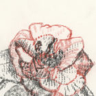 Keira_Rathbone_Typewriter_Art_Original_Chiswick_House_Type_of_Camellia_detail1