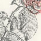Keira_Rathbone_Typewriter_Art_Original_Chiswick_House_Type_of_Camellia_detail3