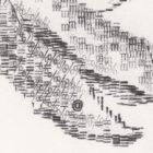 Keira_Rathbone_Typewriter_Art_Original_Magnolia_2018_detail3