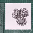 Keira_Rathbone_Typewriter_Art_Original_hops_ruler