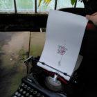 Keira_Rathbone_Typewriter_Art_Original_schizopetalus_Type_of_hibiscus_Kew