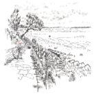 Keira_Rathbone_Candford_Cliffs_PRINT_web
