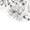 Keira_Rathbone_Typewriter_ARt_Fireworks_Original_PRINT_detail2