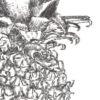 Keira_Rathbone_Typewriter_Art_Pineapple_levels_PRINT_detail2